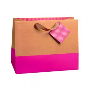 Jumbo Horizontal Color Block Gift Bags (Kraft 210 GSM, 1 Side Coated); 6 Bags Assorted