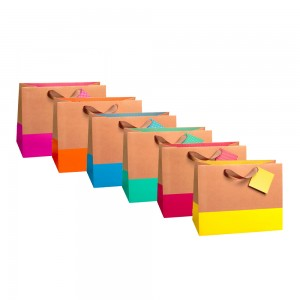 Large Horizontal Color Block Gift Bags (Kraft 210 GSM, 1 Side Coated); 6 Bags Assorted