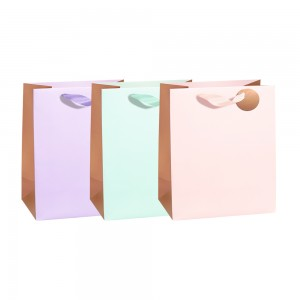 Large Color & Gold Basics Gift Bags (210 GSM, Hot Stamp); 3 Bag Assortment